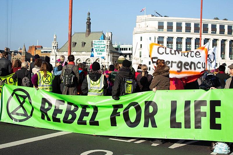 Linksextreme wollen Fridays-for-Future kapern