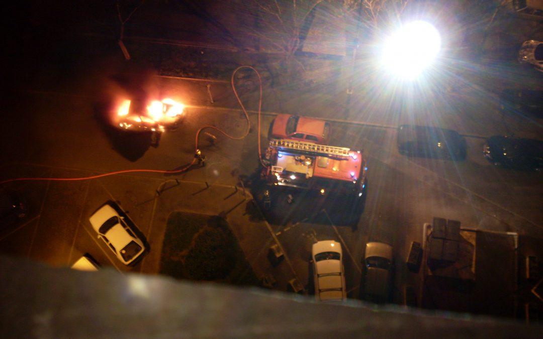 Auto von AfD-Politiker Chrupalla angezündet